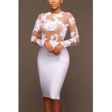 Mezcla de algodón sexy O cuello manga larga vaina rodilla vestidos